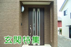 tokushuu